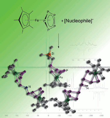 Functionalization of the cyclo-P5 ligand in pentaphosphaferrocene by main group nucleophiles.